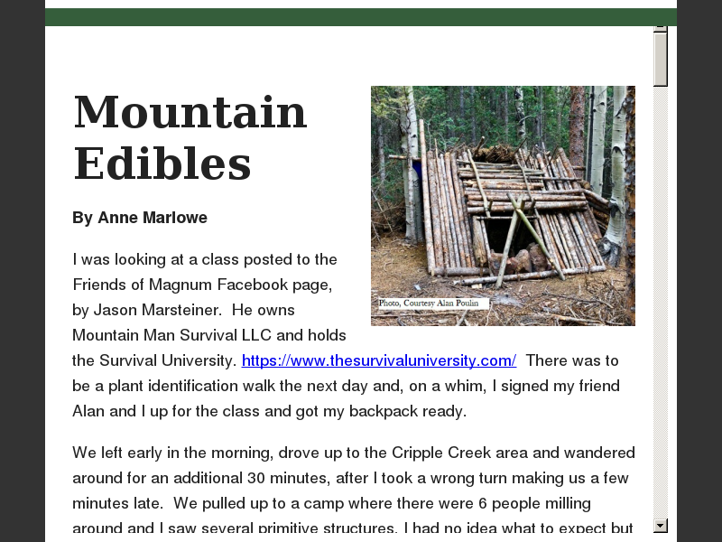 Mountain Edibles